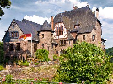 Ansicht auf die Burg Arras bei Alf.
